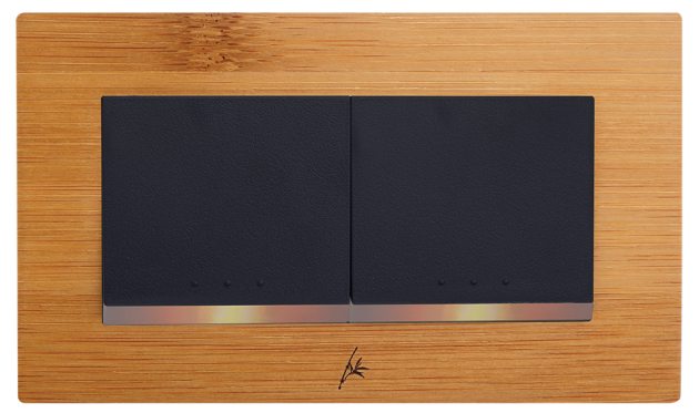 月光系列竹山竹-二開關蓋板組 1
